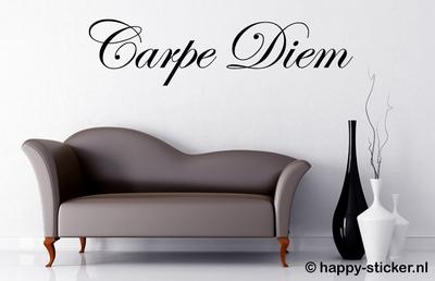 Carpe Diem XL luxe (NIEUW)