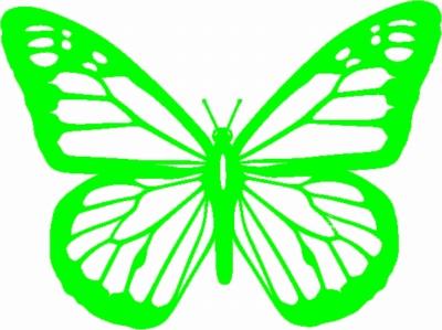 Vlinder 20 cm breed